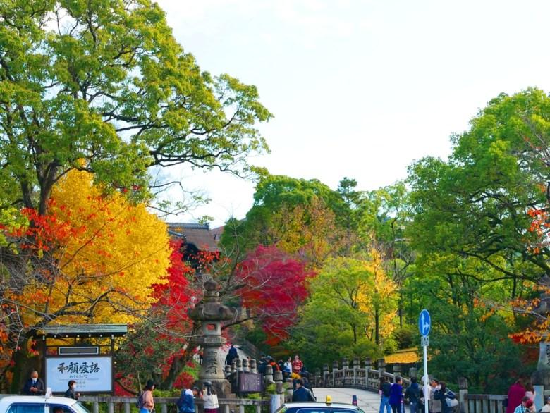 銀杏 | えんつうきょう | 大谷本廟 円通橋 | 京都 | 近畿(關西) | 日本 | 巡日旅行攝