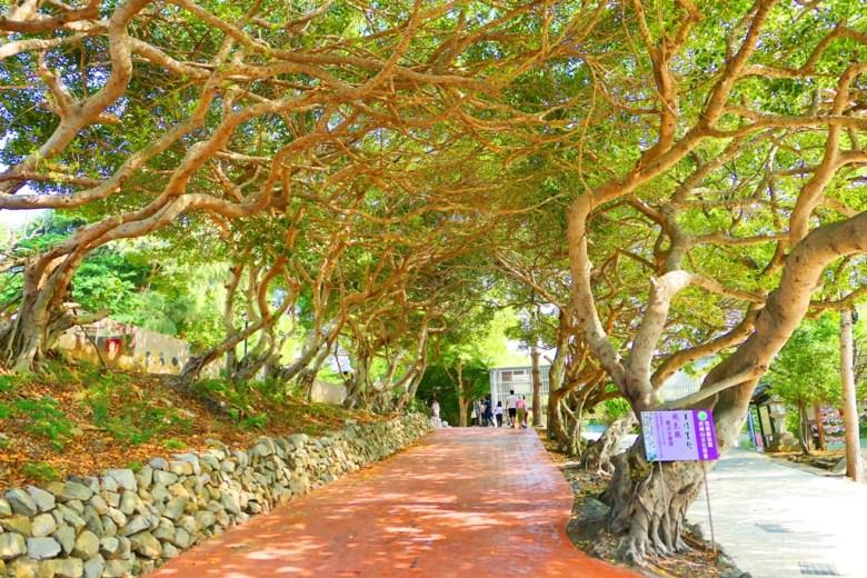 綠色隧道 | 苗栗通霄神社 | 虎頭山公園 | 苗栗 | 臺灣 | 一抹和風 | 巡日旅行攝