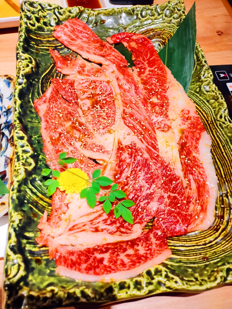 雪花牛肉 | 日本和牛 | Wagyu | わぎゅう | 日本 | Japan | 巡日旅行攝