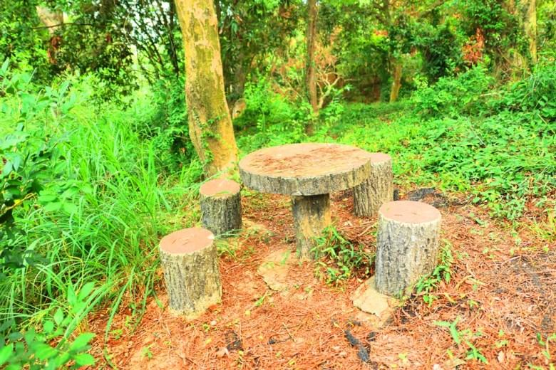 龍過脈森林步道 | 木質桌椅 | 森林質感 | 林內 | 雲林 | 臺灣 | 巡日旅行攝