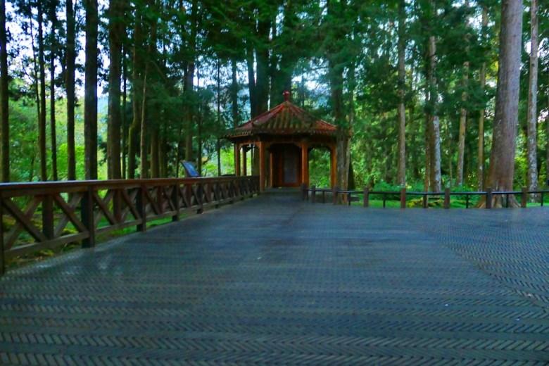 阿里山神社遺址 | 巨木群棧道 | Giant TreesPlankWalk | Taiwan | RoundtripJp
