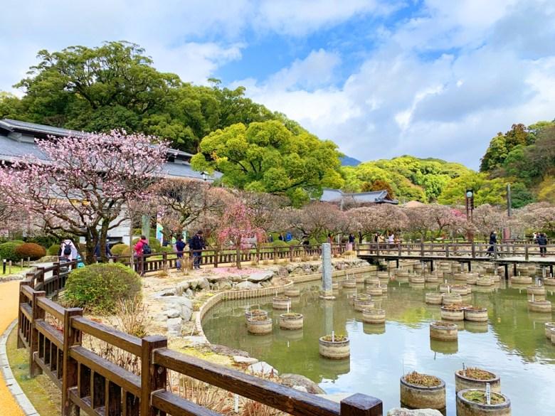 Colorful Japan | 福岡縣 | 太宰府天満宮 | Japan | RoundtripJp