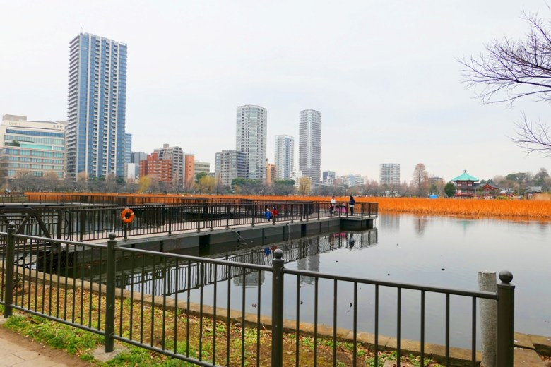 上野恩賜公園 | うえのこうえん | 上野 | 東京 | 日本 | 巡日旅行攝