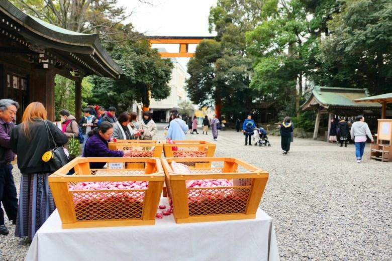 多彩日本 | 埼玉縣 | 川越冰川神社 | 日本 | 巡日旅行攝
