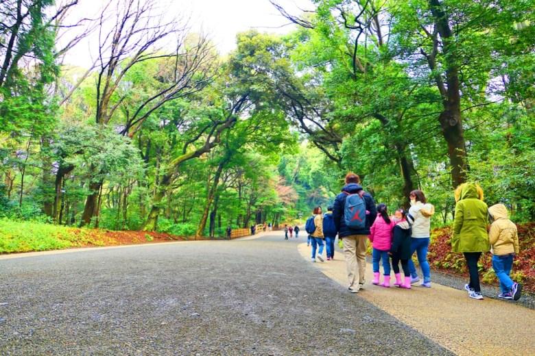 多彩日本 | 東京澀谷明治神宮 | 日本清新景點 | TOP10 | 巡日旅行攝