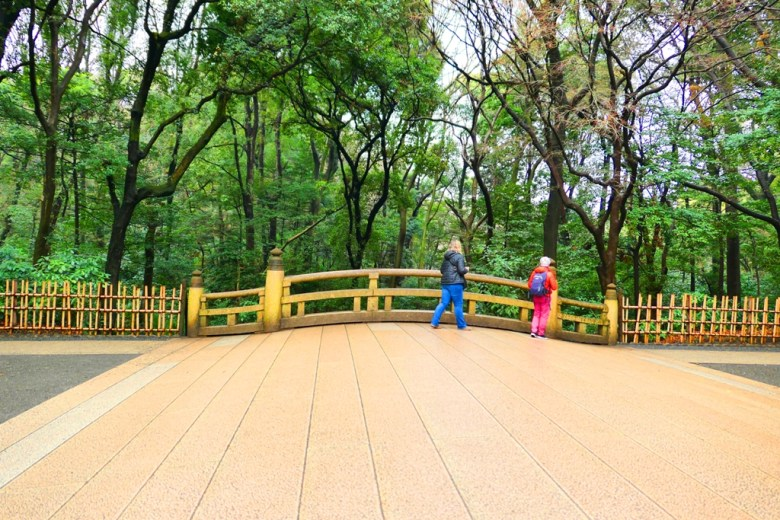 Colorful Japan | 東京澀谷明治神宮 | Japanese Green attractions | TOP10 | RoundtripJp