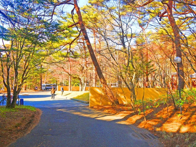 Colorful Japan | 長野輕井澤高原教會 | Japanese Green attractions | TOP10 | RoundtripJp