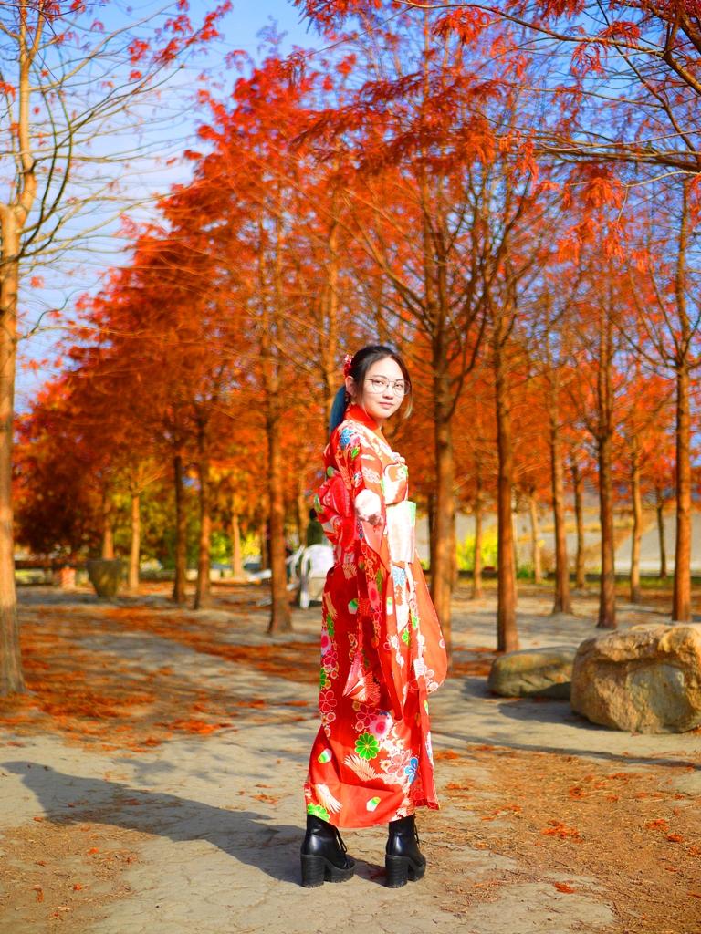 落羽松並木大道 | 和服少女 | 落葉秋色 | 網美景點 | 泰安 | 苗栗 | 巡日旅行攝