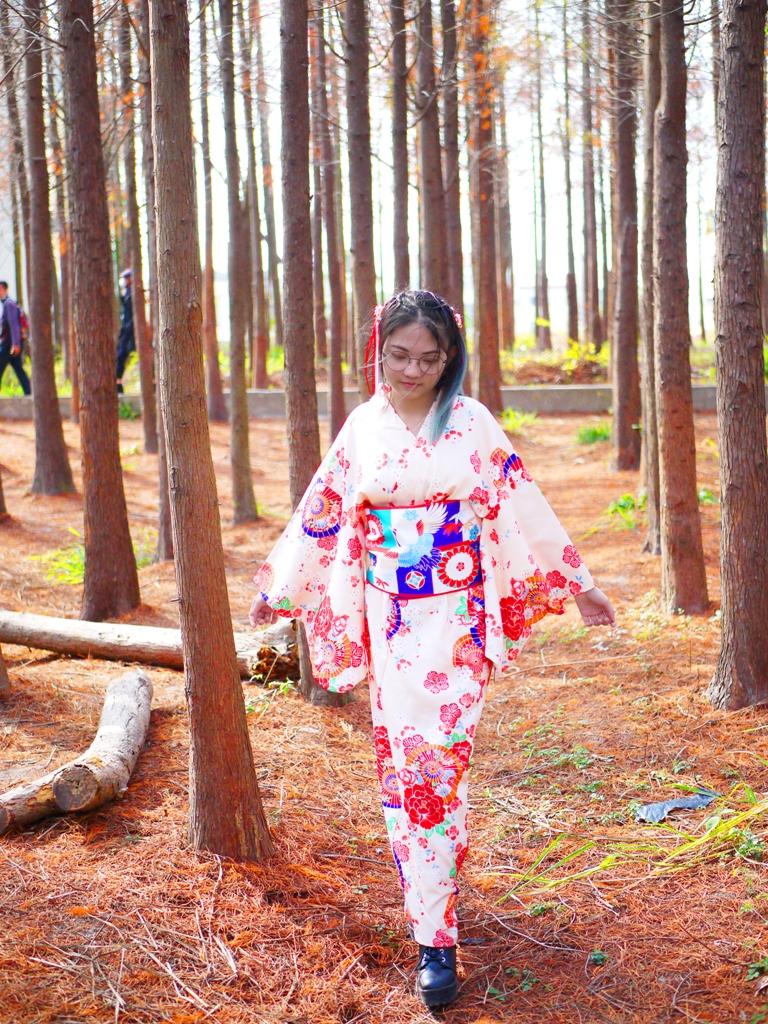 和服少女 | 紅葉森林 | 日本味 | 秘境中一抹亮點 | だいと | たいちゅう | 巡日旅行攝