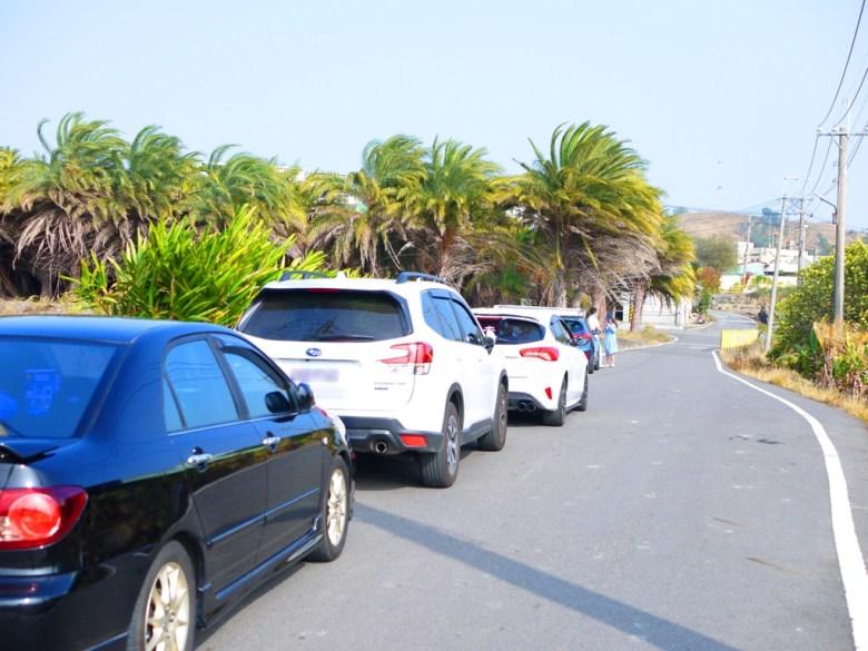大肚落羽松秘境前馬路 | 沙田路一段 | Dadu | Taichung | 大肚 | 臺中 | 巡日旅行攝
