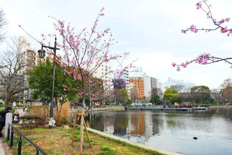 多彩日本 | 上野公園 | 東京 | 日本景點 | TOP10 | 巡日旅行攝