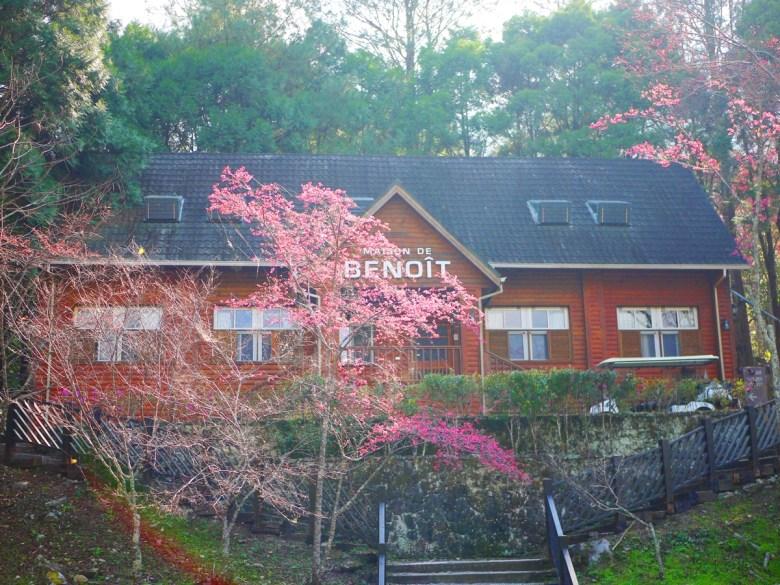 小木屋與山櫻 | 充滿著長野輕井澤渡假勝地的氛圍 | 大自然森呼吸 | 八仙山國家森林遊樂區 | 和平 | 台中 | RoundtripJp