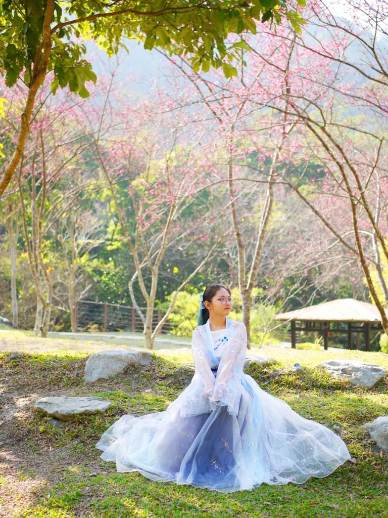 大自然的網美景點 | 絕美緋寒櫻 | 充滿仙氣的漢服 | Basianshan National Forest Recreation Area | Heping | Taichung | RoundtripJp