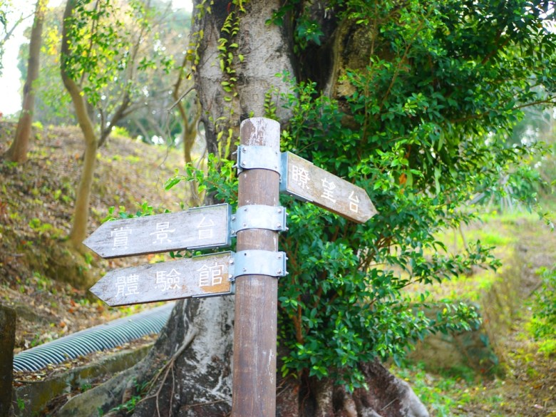 往左賞景台&體驗館 | 往右瞭望台 | 梅山公園 | メイシャンこうえん | Meishan Park | 梅山 | 嘉義 | 巡日旅行攝