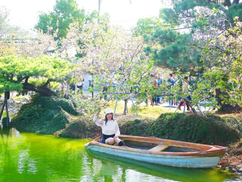 櫻花與青青湖畔 | 網美拍照 | 松葉樹 | Sakura | さくら | サクラ | Wuri | Taichung | 烏日 | 台中 | 巡日旅行攝