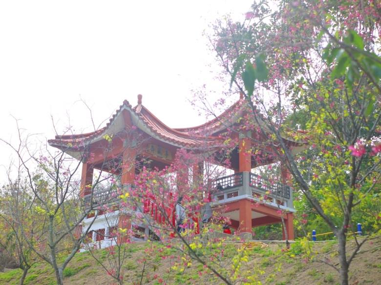 舞風亭 | 鳥瞰虎山巖滿山遍野的花海最佳觀景點 | Hushanyan | Huatan | Changhua | RoundtripJp