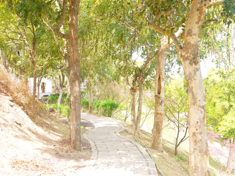 清新的林間小徑 | 風景宜人 | 空氣清新 | 陽光燦爛 | 舒服的風 | Hushanyan | Huatan | Changhua | RoundtripJp