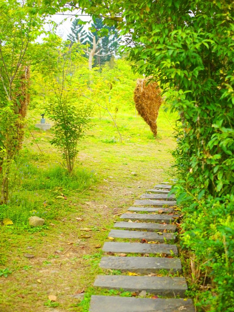 綠色草皮 | 石頭步道 | 自然的環境 | 小半天石馬公園 | Shih Ma Park | 櫻花公園 | 日式公園 | 和風臺灣 | 巡日旅行攝