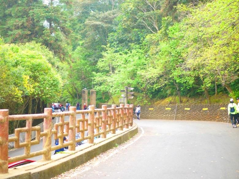 南投鳳凰自然教育園區出入口處 | 前為入口收費亭 | 南投鳳凰自然教育園區 | ルーグー | Lugu | Nantou | RoundtripJp