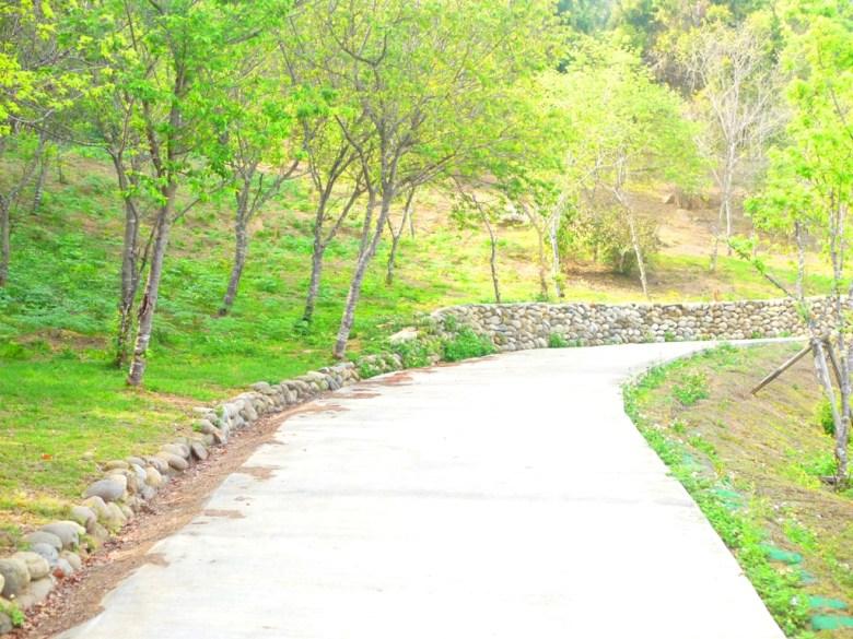金龍山步道 | 森呼吸 | 自然清新 | 金龍山觀景臺 | ユーチー | Yuchi | Nantou | RoundtripJp