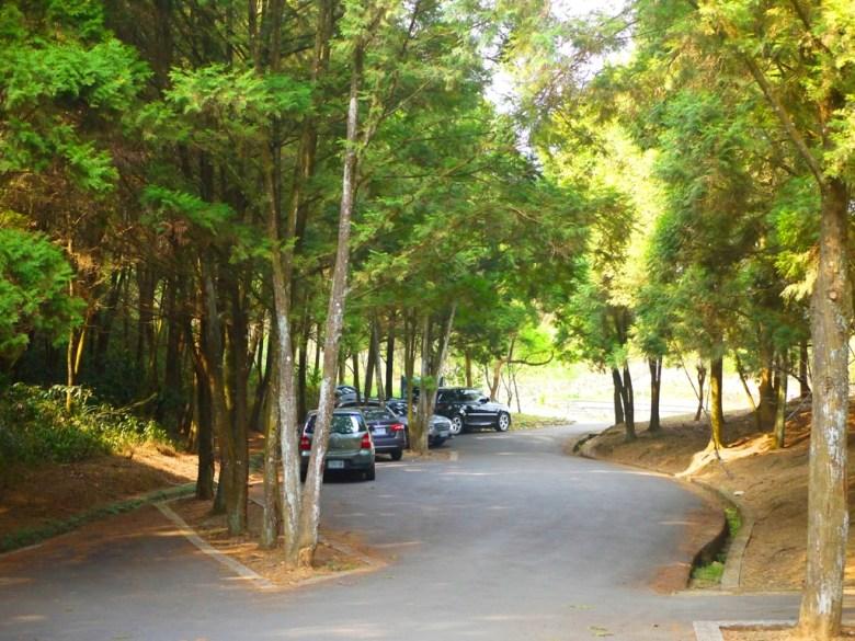金龍山觀景臺 | 第二觀景台前車道 | 魚池 | 南投 | ユーチー | Yuchi | Nantou | RoundtripJp