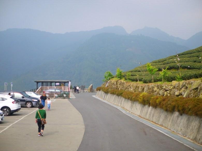 高山中的茶園 | 畫面左邊為免費停車場 | 畫面右邊為美麗的茶園 | 青山 | 雲霧繚繞 | 臺灣旅人 | Zhushan | Nantou | RoundtripJp