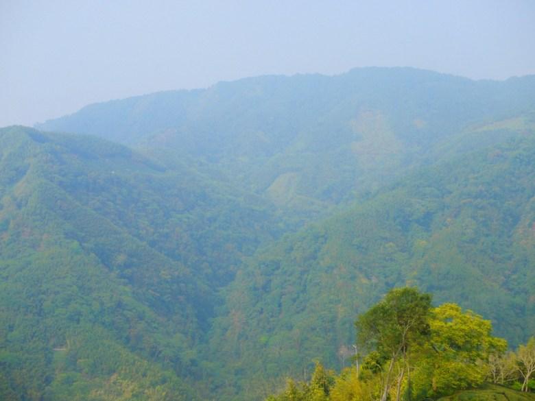 高山 | 綿延不絕的群山 | 青山 | 南投八卦茶園 | 竹山 | 南投 | 巡日旅行攝
