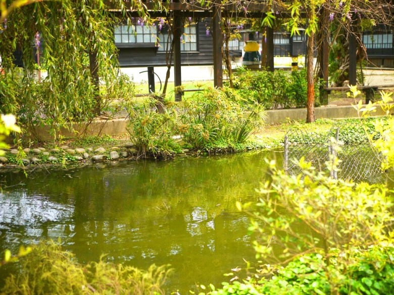美麗的校園生態池 | 後方為日式宿舍 | Japanese dormitory | 苑裡 | 苗栗 | RoundtripJp