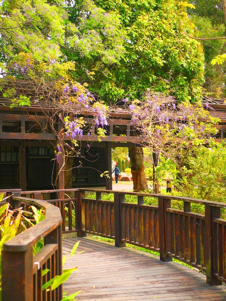 山腳國小木橋 | 往日式宿舍方向 | 苑裡 | 苗栗 | ユエンリー | ミアオリー | 巡日旅行攝