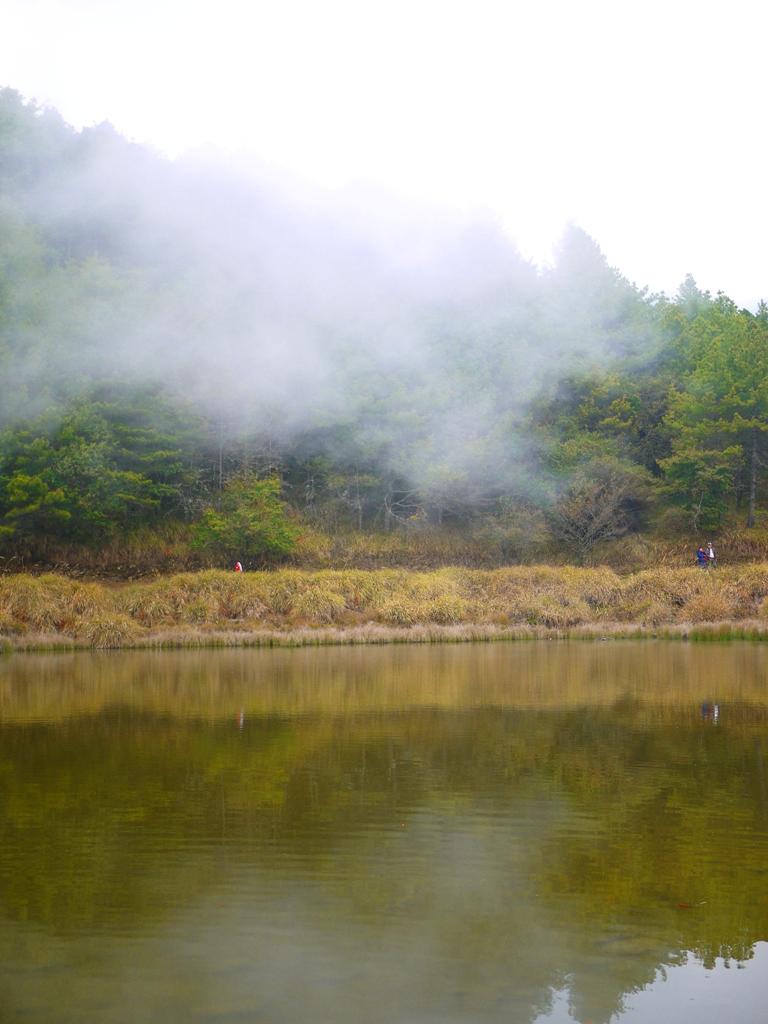 霧氣奔騰 | 天池 | 臺灣旅人 | 大雪山 | 大雪山國家森林遊樂區 | 和平 | 台中 | RoundtripJp
