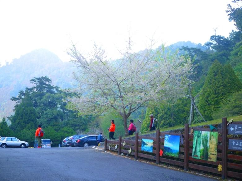 傍晚時分的大雪山旅客中心 | 霧社櫻 | 臺灣旅人 | 和平 | 台中 | 巡日旅行攝
