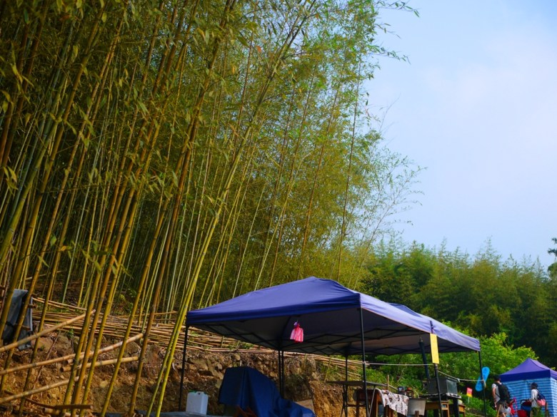 烏嘎彥竹林前攤販 | 竹林小徑 | 秘境 | Bamboo Forest | Taian | Miaoli | 巡日旅行攝