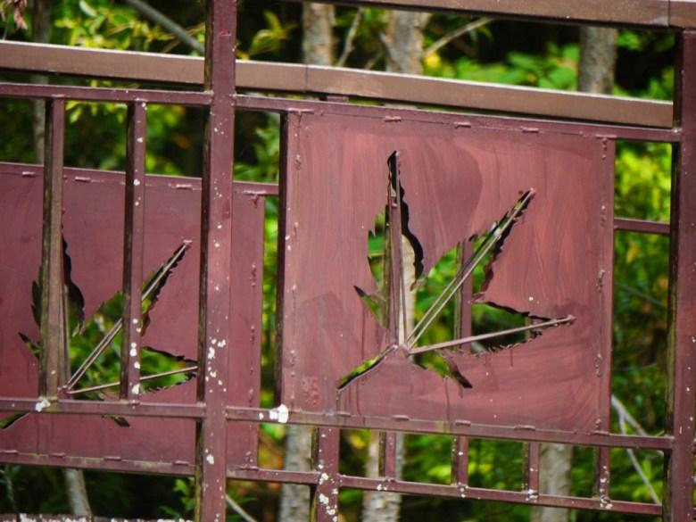 楓葉印象的鐵橋 | 生態池之上 | 奧萬大國家森林遊樂區 | レンアイ | ナントウ | RoundtripJp