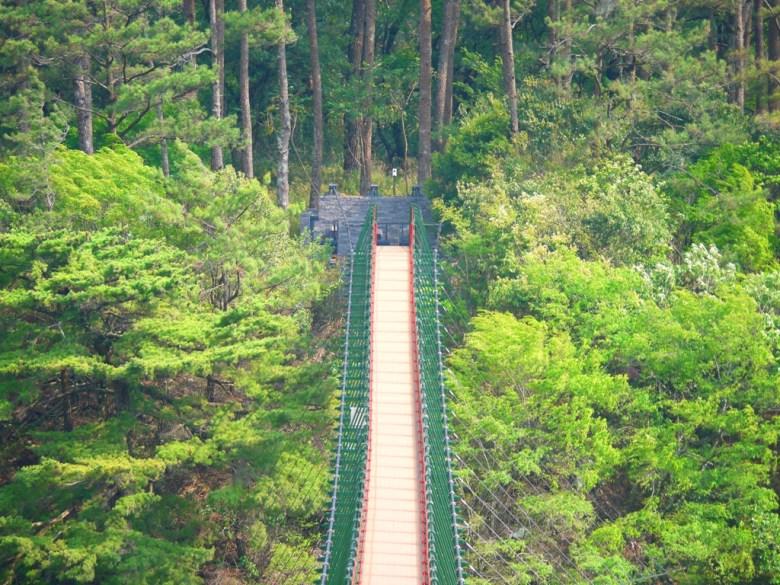 高聳的吊橋 | 十分氣派 | 被森林包圍的夢幻吊橋 | 奧萬大國家森林遊樂區 | レンアイ | ナントウ | 巡日旅行攝