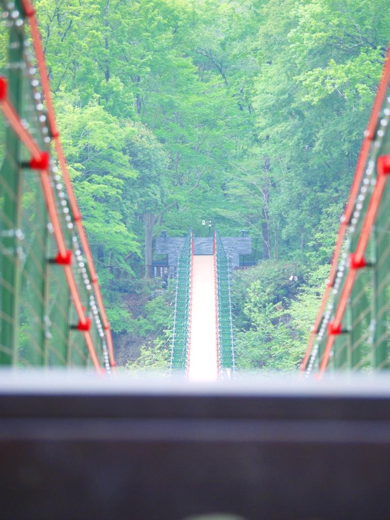 高聳壯觀的高山吊橋 | 奧萬大吊橋 | Aowanda Suspension Bridge | 奧萬大國家森林遊樂區 | レンアイ | ナントウ | RoundtripJp