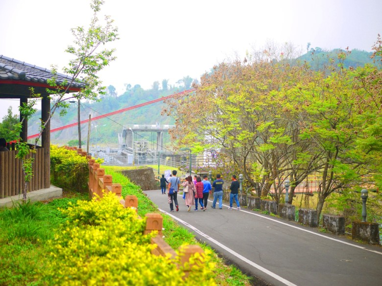 桶頭吊橋入口處   台灣旅人   清水溪   自然景觀   日本味   Takeyama   Zhushan   Nantou   RoundtripJp