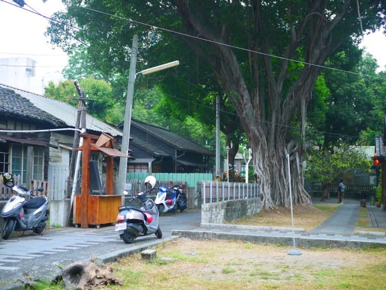 巨大榕樹 | 日式景點 | 斗六雲中街日式宿舍群 | 斗六 | 雲林 | ドウリウ | ユンリン | RoundtripJp