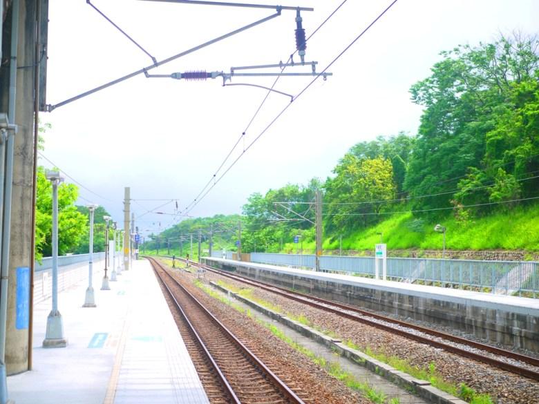 鄉下車站 | 秘境車站 | 被綠意包圍的車站 | 崎頂車站 | チーディンえき | チーディン | ジューナン | ミアオリー | 巡日旅行攝