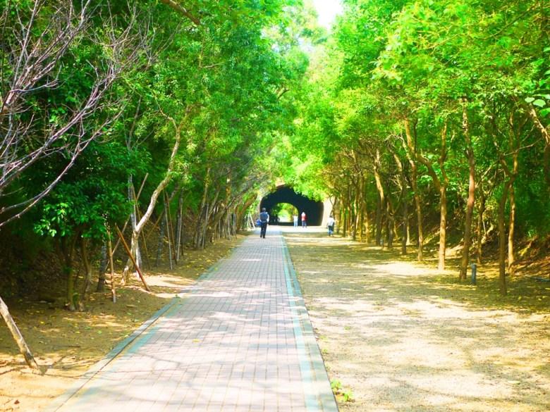 前為崎頂一號隧道 | 舒適好走的綠色隧道 | チーディン | ジューナン | ミアオリー | RoundtripJp