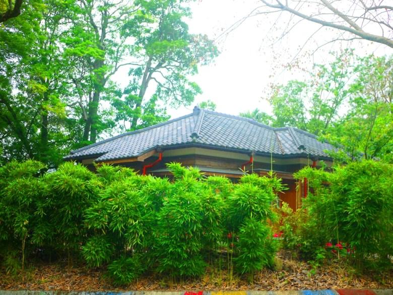 竹林 | 深藏在綠樹山林之中的南庄南埔國小舊日式宿舍 | Nanzhuang | Miaoli | ナンジュアン | ミアオリー | RoundtripJp