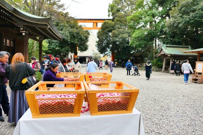 川越冰川神社   ひかわじんじゃ   Hikawa Shrine   Kawagoe   かわごえし   日本   Japan   巡日旅行攝   Roundtripjp