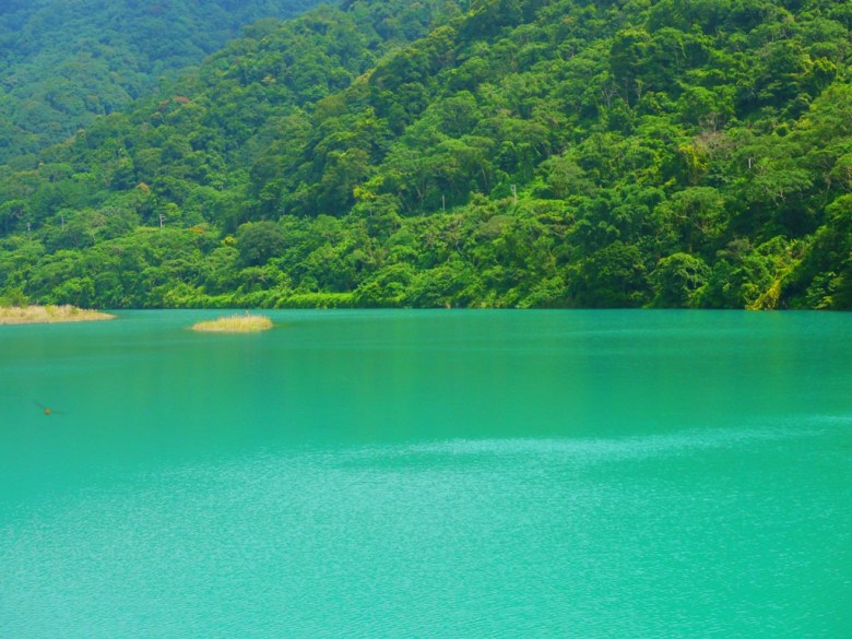 令人放鬆的青池 | 自然的原色 | 漸層的綠 | タイアン | たいあん | ミアオリー | Wafu Taiwan | 巡日旅行攝 | RoundtripJp