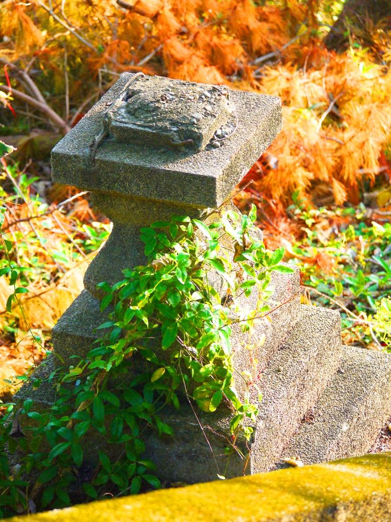 殘存的神社基座   苗栗稻荷神社遺跡   Miaoli Inari Shrine Ruins   びょうりつし   ミアオリー   Wafu Taiwan   巡日旅行攝   RoundtripJp