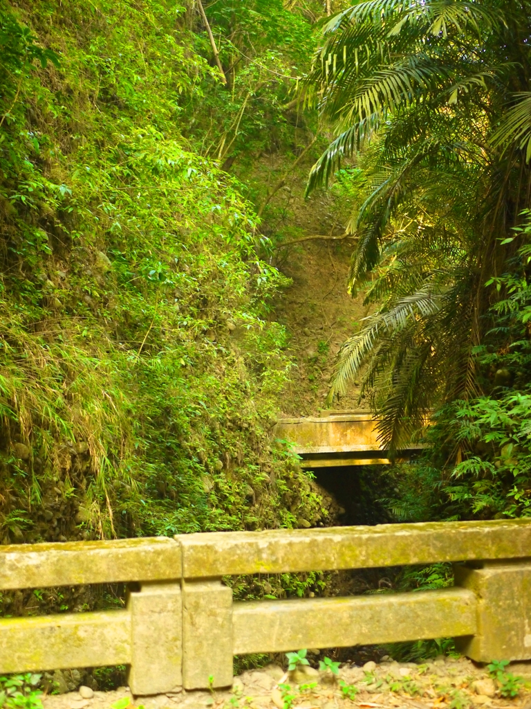 雙龍隧道&長青隧道中間的小橋 | 光明與黑暗隧道中的小橋 | 隧道奇景一線天 | 草屯 | 南投 | Caotun | Nantou | Wafu Taiwan | 巡日旅行攝 | RoundtripJp