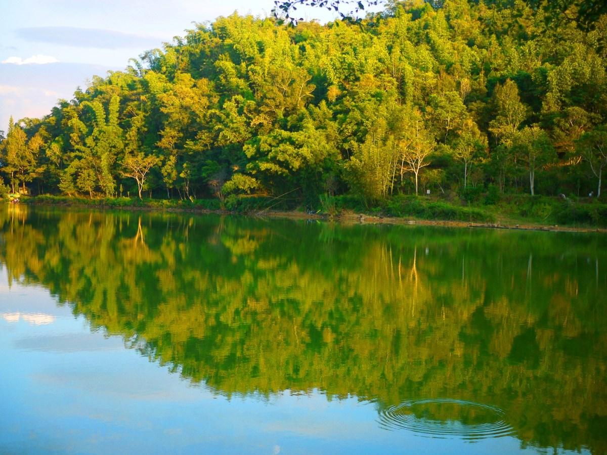 倒映的山巒 | 無邊無際的的山林 | 埔里絕景 | Nantou | Wafu Taiwan | 巡日旅行攝 | RoundtripJp