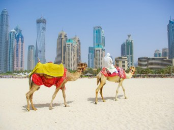 Routemate Dubai Tour Packages
