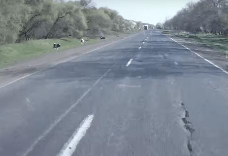 Днепропетровск -  Решетиловка Р 52