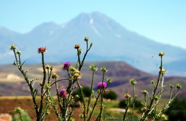 in the background the highest mountain in Cappadocia - Mt. Erciyes