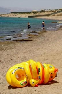 famous lifebuoy - everywhere on a beach