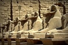 Ram statues at Karnak